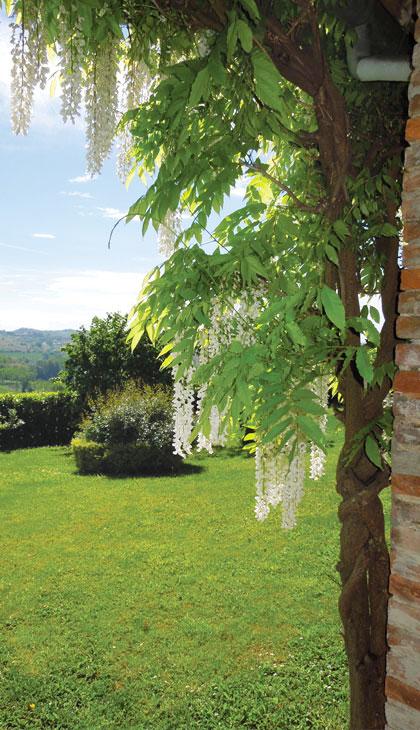 Casarovelli - The flowery garden