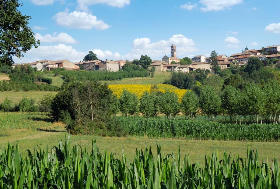 Sanico - Monferrato - Piedmont - Italy